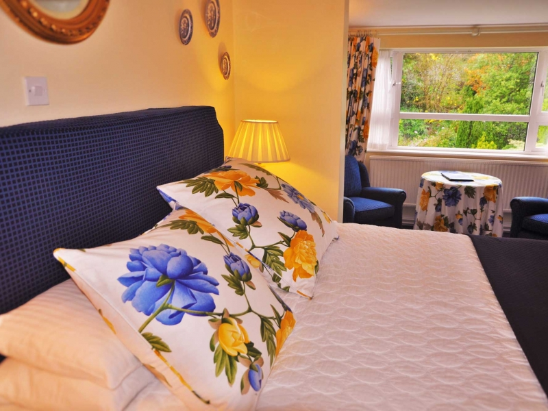 Historic Country House Hotel Accommodation Connemara : Superior Rooms